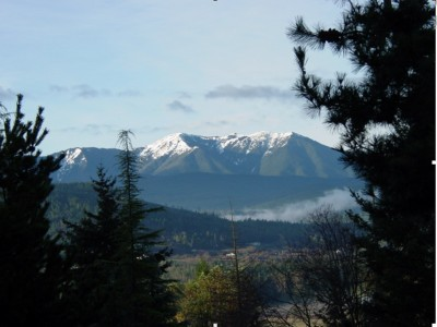 Blue Mountain From Sequim