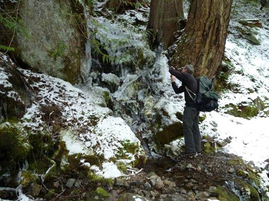 One of the streams that crosses the trail provided an icy distraction and lots of camera attention. Steve getting up close and personal for a shot. Then we all converged for a closer look.