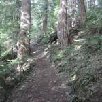 Trail guardians