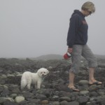 Cal and Trish beachcombing