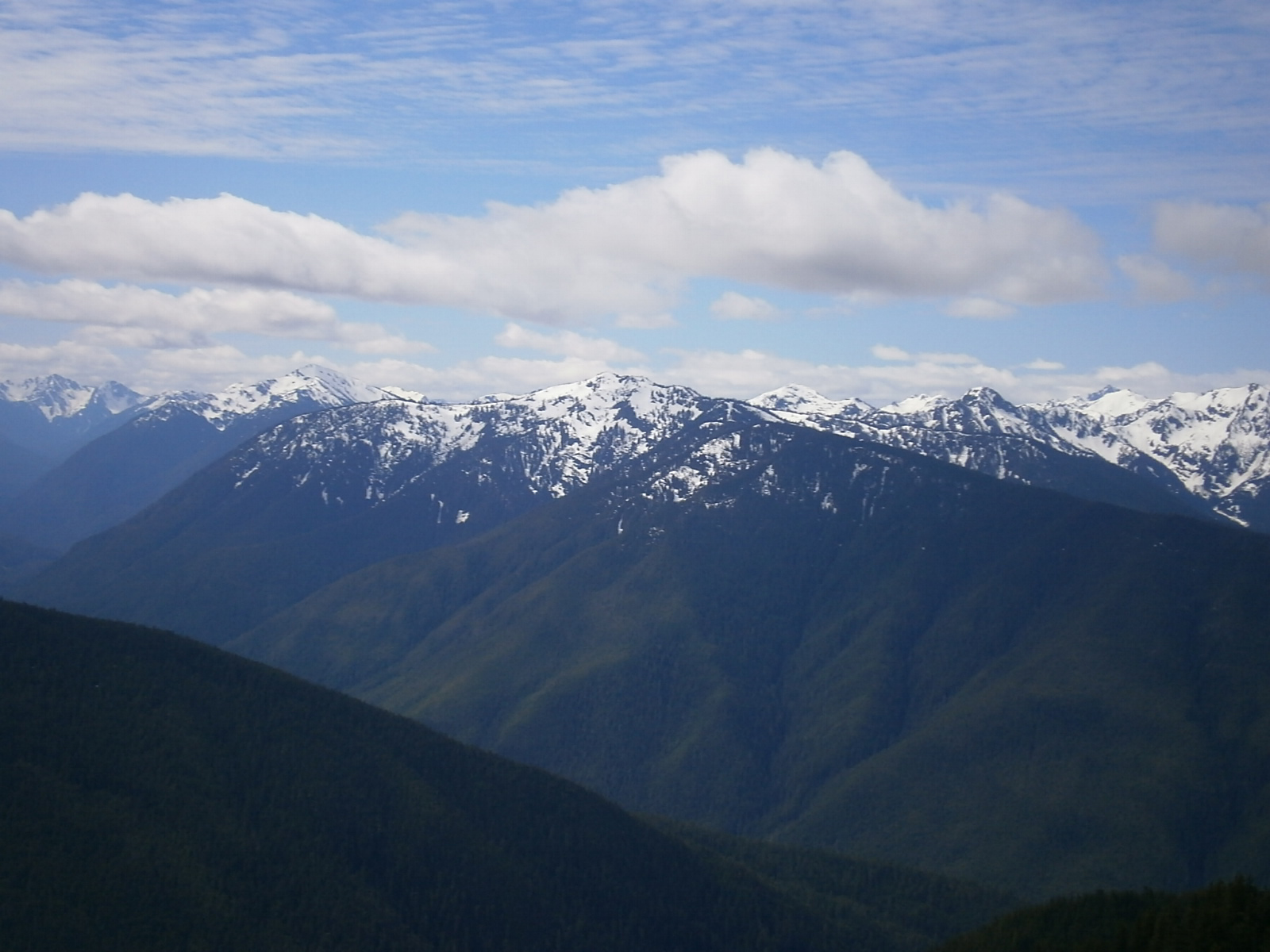Day Trip on the Olympic Peninsula