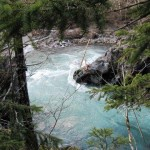 Elwha River and Goblins Gate hike SM