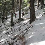 Bigger firs and deeper snow