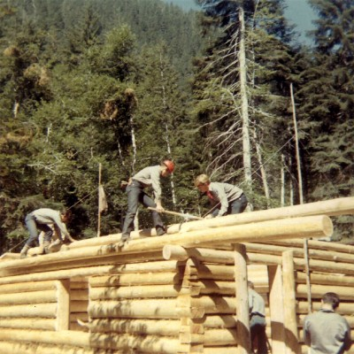 Cabin walls