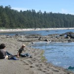 beach south of Cape Alava
