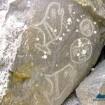 Petroglyphs at Wedding Rocks
