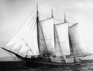 Wawona 1899 with full load lumber in its hold and on its deck. Photo Courtesy Northwest Seaport