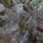 Vertical bands of rock exposed on the trail