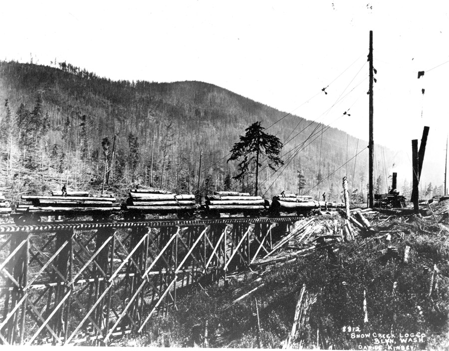 Snow Creek Logging Company trestle and spar tree courtesy of the Clallam County Historical Society