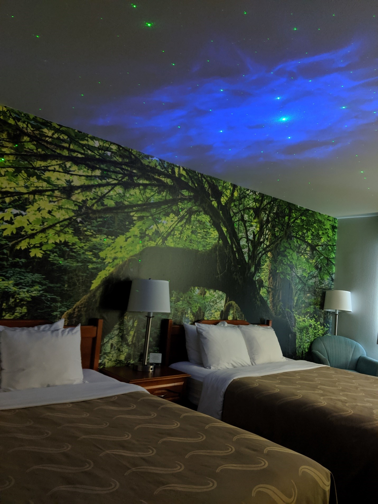 A double queen room at the Quality Inn and Suites in Sequim Washington with a mural of the national forest on the wall.