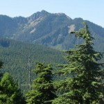 North face of Steeple Rock from the Hurricane Ridge road