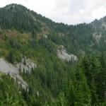 Bogachiel Mt. left; from High Divide loop trail