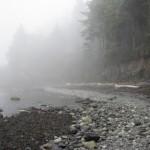 A misty Salt Creek Recreation Area