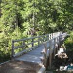 A pleasant trail