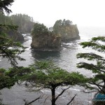 Makah tribe's special place
