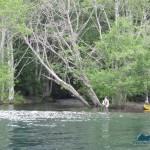 Fishermen at Barnes Creek