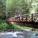 Substantial Gray Wolf River bridge