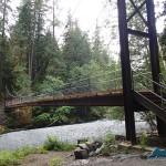 Now that's a bridge