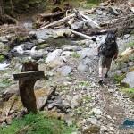 Donohue Creek