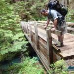 We admire the substantial bridge