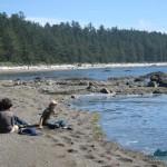 beach south of Cape Alava