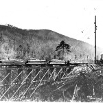 Snow Creek Logging Company trestle and spar tree courtesy of the Clallam County Historical Society.